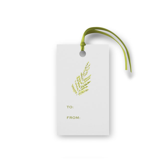 Gift tag featuring a Green fern printed on White paper.
